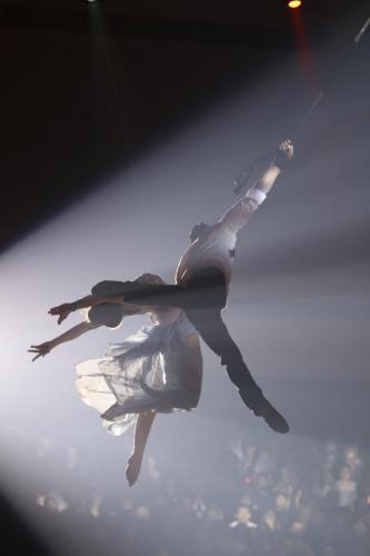 FRANCK ETCHEVERRY_Circus-2369